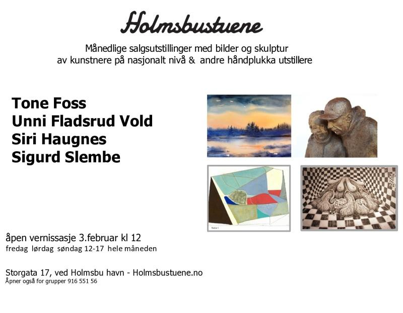 Holmsbustuene - Februar 2018